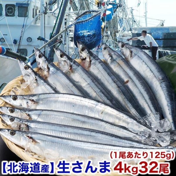 生サンマ 4kg前後 32尾前後 125g前後 中サイズ 北海道産 秋刀魚 さんま 10月上〜中旬前後より収獲次第順次出荷 お届け日指定不可 キャンセル不可 受取不在注意