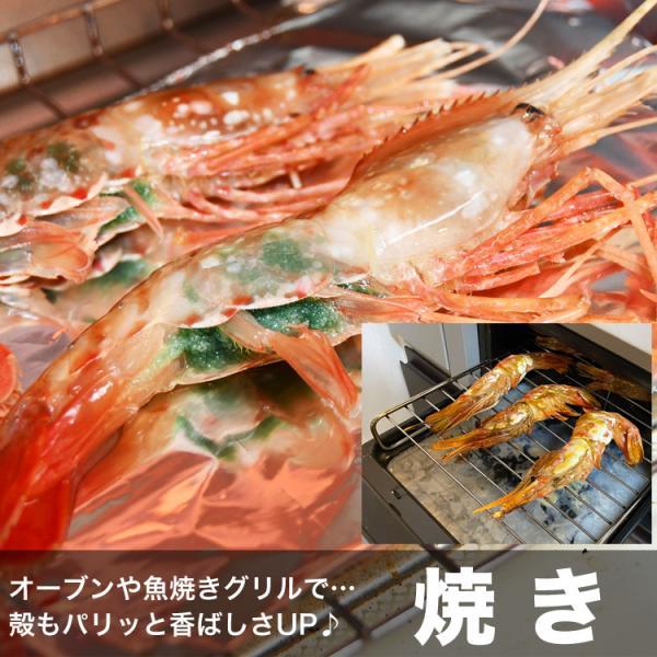 ボタンエビ 刺身 海老 えび エビ 蝦  生 ぼたんえび1kg 冷凍 foodsland 08