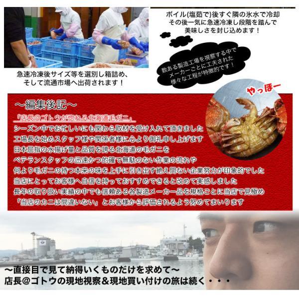 複数注文で送料割引特典 毛ガニ 毛がに 毛蟹 けがに  北海道 オホーツク 特大 一級品 約570g ボイル加熱済 冷凍 foodsland 07