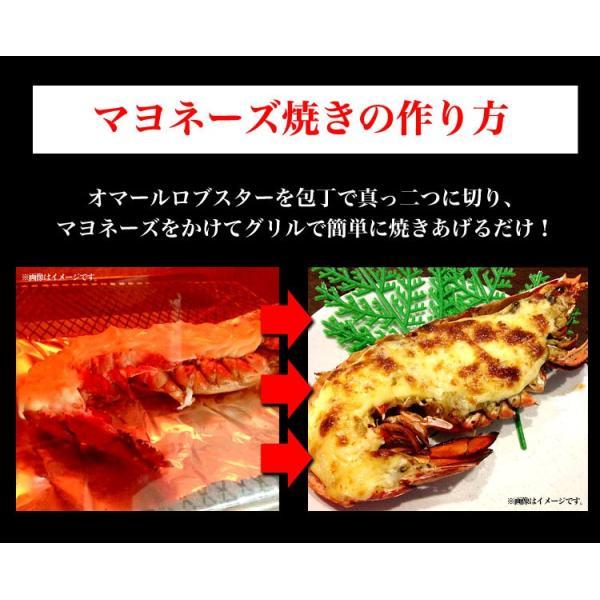 えび 海老 蝦 ボイルオマールロブスター オマールエビ Lサイズ約400g前後4尾 高級食材|foodsland|05