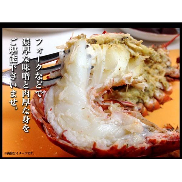 えび 海老 蝦 ボイルオマールロブスター オマールエビ Lサイズ約400g前後4尾 高級食材|foodsland|07