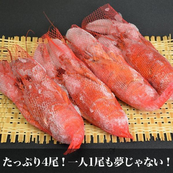 えび 海老 蝦 ボイルオマールロブスター オマールエビ Lサイズ約400g前後4尾 高級食材|foodsland|09