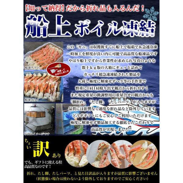 父の日 カニ ズワイガニ 脚 ズワイ蟹 かに ずわいがに 足 約3kg 特大  ボイル 多少脚折込 冷凍 夏カニ|foodsland|11