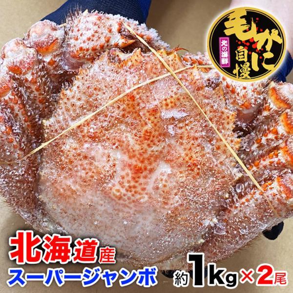 超特大BIG800g2尾 毛ガニ 一級品堅の毛がに けがにカニ味噌 蟹のかにみそ ボイル加熱済み急速冷凍|foodsland