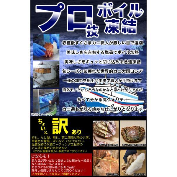 超特大BIG800g2尾 毛ガニ 一級品堅の毛がに けがにカニ味噌 蟹のかにみそ ボイル加熱済み急速冷凍|foodsland|10
