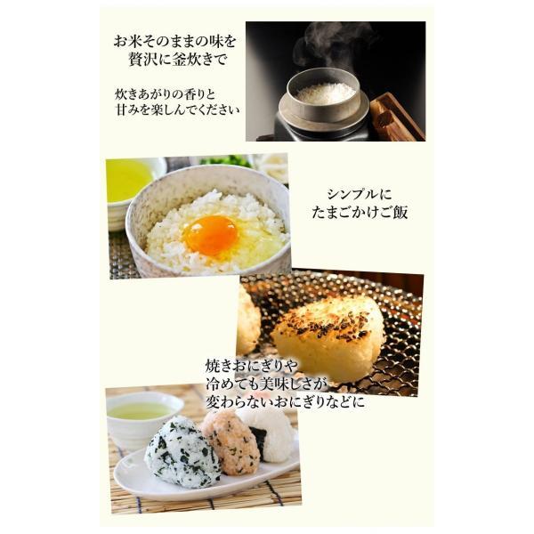 森のくまさん 米 送料無料 5kg 30年度産新米 熊本県産 白米 お米 こめ 新米 ひのひかり こしひかり|foodys|07