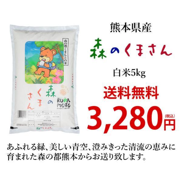 森のくまさん 米 送料無料 5kg 30年度産新米 熊本県産 白米 お米 こめ 新米 ひのひかり こしひかり|foodys|09