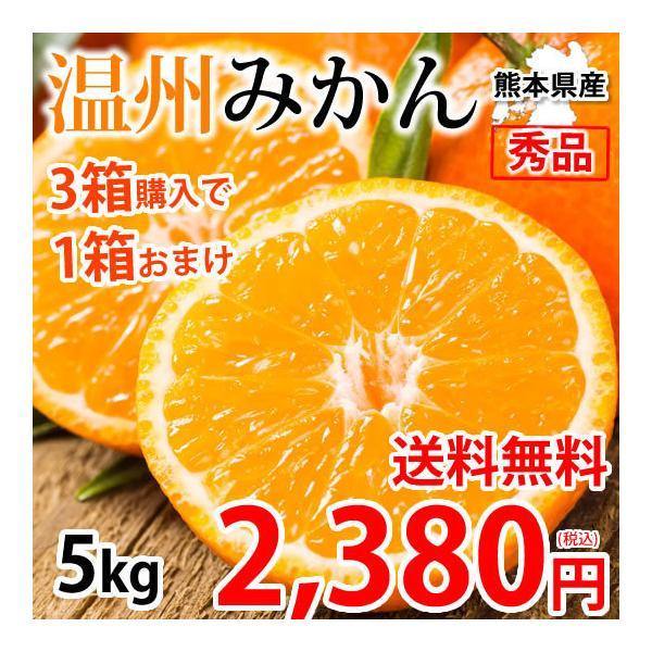 みかん 5kg 送料無料 温州みかん 秀品 3箱購入で1箱おまけ 熊本県産 蜜柑 ミカン