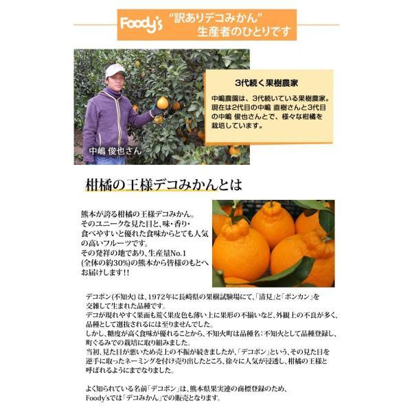 デコポン 同品種 訳ありデコみかん 1.5kg S〜2L 送料無料 2セットで1セットおまけ 3セットで3セットおまけ 熊本県産 ポンカン みかん ミカン 蜜柑|foodys|10