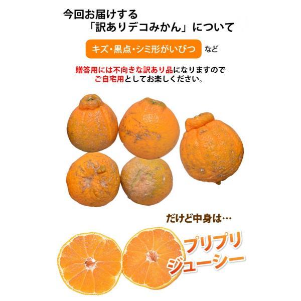 デコポン 同品種 訳ありデコみかん 1.2kg S〜2L 送料無料 2セットで1セットおまけ 3セットで3セットおまけ 熊本県産 ポンカン みかん ミカン 蜜柑 foodys 09