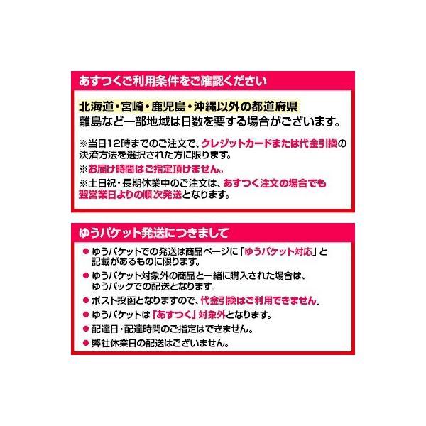 スリッポン スニーカー コンバース オールスター ローカット レディース メンズ CONVERSE SLIP III OX 取扱店舗限定カラー|footone|06
