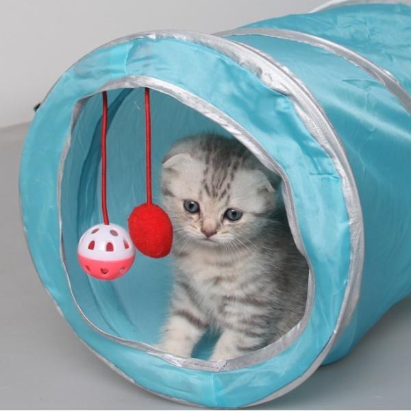 猫 おもちゃ トンネル ボール カシャカシャ 猫のおもちゃ スパイラル 猫じゃらし ペット用品 犬 ねこ キャットトイ four-piece 12