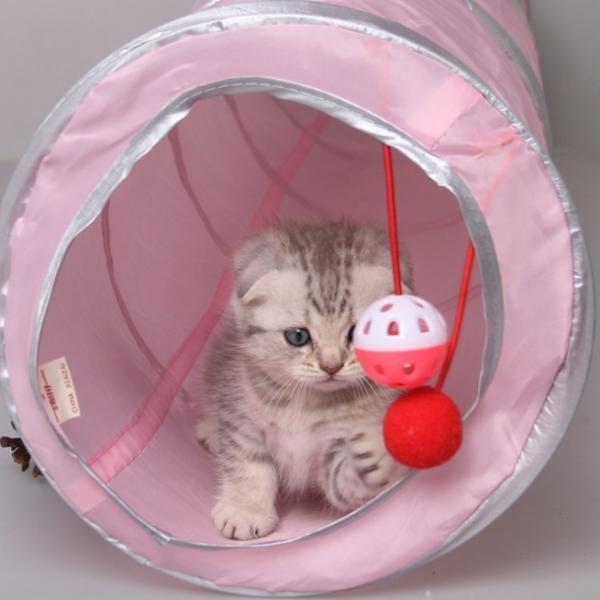 猫 おもちゃ トンネル ボール カシャカシャ 猫のおもちゃ スパイラル 猫じゃらし ペット用品 犬 ねこ キャットトイ four-piece 13