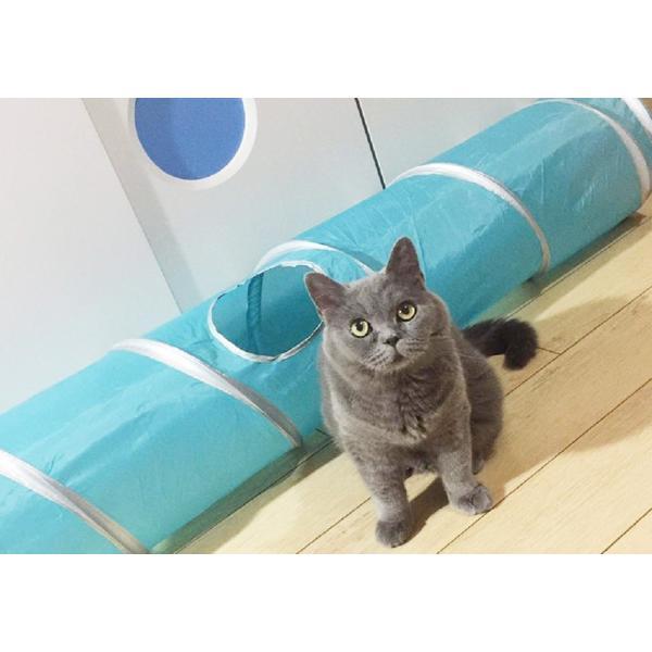 猫 おもちゃ トンネル ボール カシャカシャ 猫のおもちゃ スパイラル 猫じゃらし ペット用品 犬 ねこ キャットトイ four-piece 15