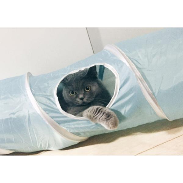 猫 おもちゃ トンネル ボール カシャカシャ 猫のおもちゃ スパイラル 猫じゃらし ペット用品 犬 ねこ キャットトイ four-piece 16