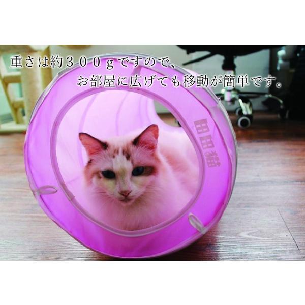 猫 おもちゃ トンネル ボール カシャカシャ 猫のおもちゃ スパイラル 猫じゃらし ペット用品 犬 ねこ キャットトイ four-piece 03
