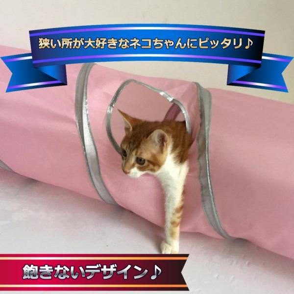 猫 おもちゃ トンネル ボール カシャカシャ 猫のおもちゃ スパイラル 猫じゃらし ペット用品 犬 ねこ キャットトイ four-piece 07