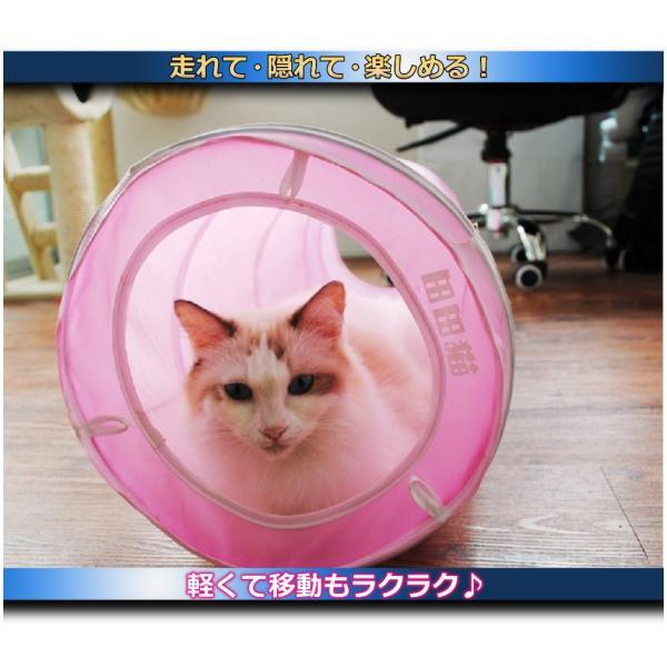 猫 おもちゃ トンネル ボール カシャカシャ 猫のおもちゃ スパイラル 猫じゃらし ペット用品 犬 ねこ キャットトイ four-piece 08