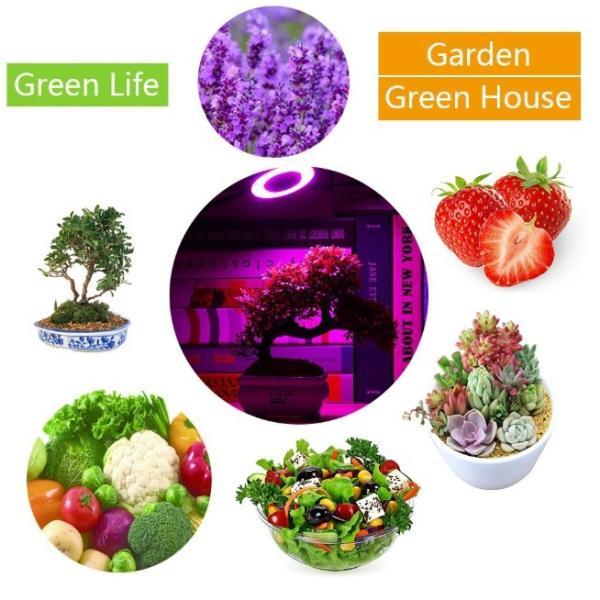 植物 ライト LED クリップ式 USB充電 観葉植物 多肉植物 おしゃれ インテリア 育成 成長促進 ランプ 光合成 日光 光 家庭菜園 日照不足 解消 水草栽培 室内栽培|four-piece|18