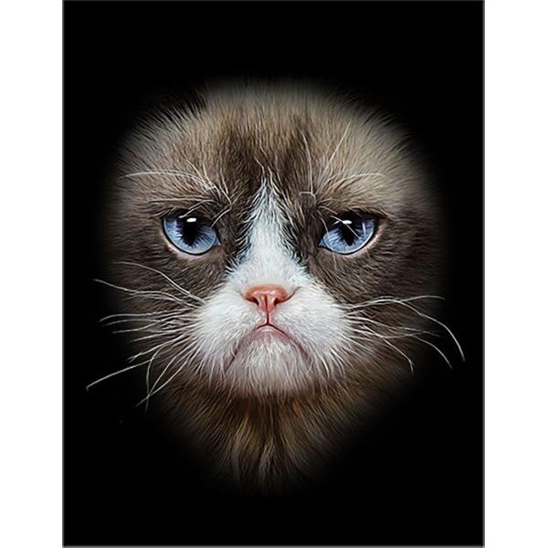 【猫の顔・シャムネコ】ポストカード 黒背景