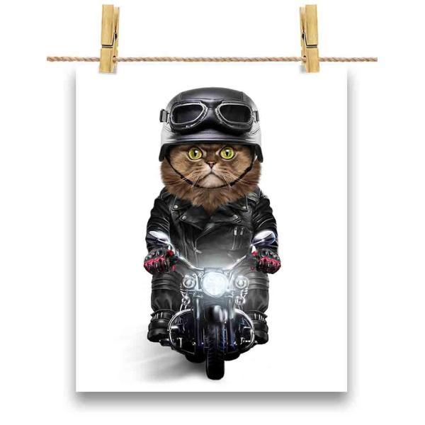 【ペルシャ猫 ねこ バイク ヘルメット】ポストカード by Fox Republic