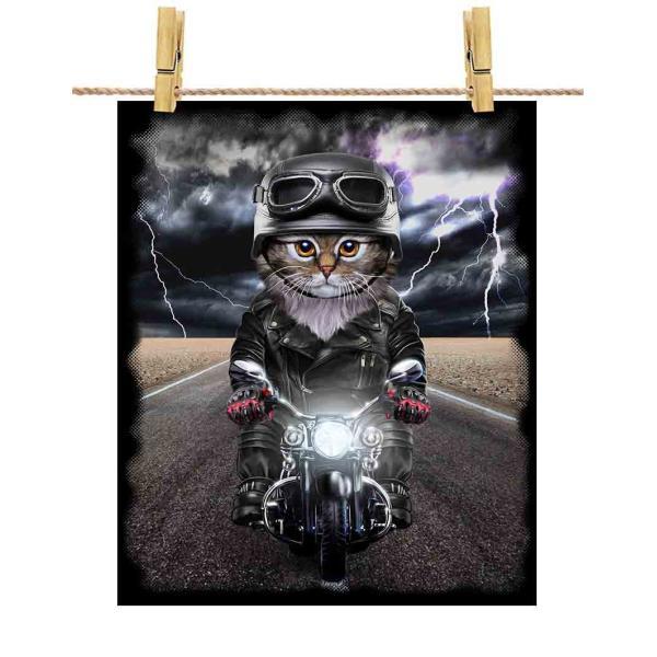 【サイベリアン ねこ バイク ヘルメット】ポストカード by Fox Republic