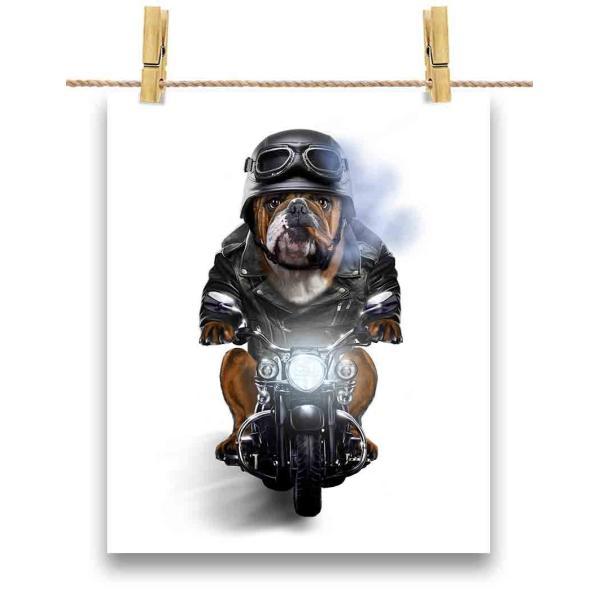 【ブルドッグ ドッグ 犬 いぬ バイク ヘルメット】ポストカード by Fox Republic