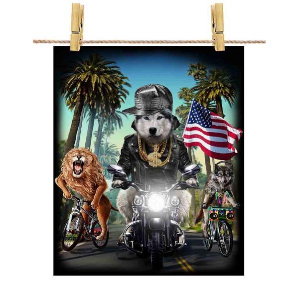 【シベリアンハスキー ドッグ 犬 いぬ バイク ヒップホップ】ポストカード by Fox Republic