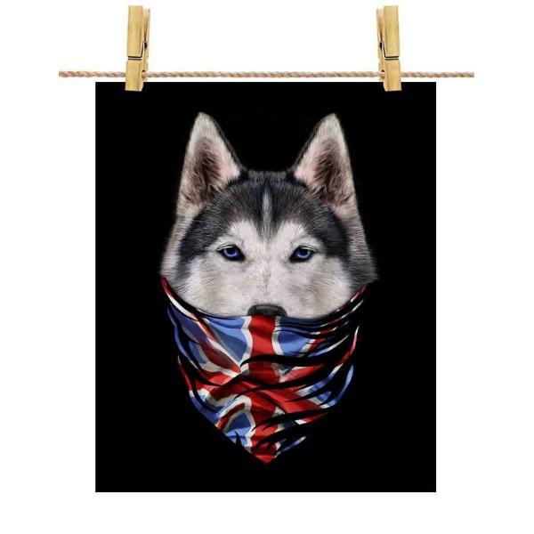 【シベリアンハスキー ドッグ 犬 いぬ イギリス】ポストカード by Fox Republic