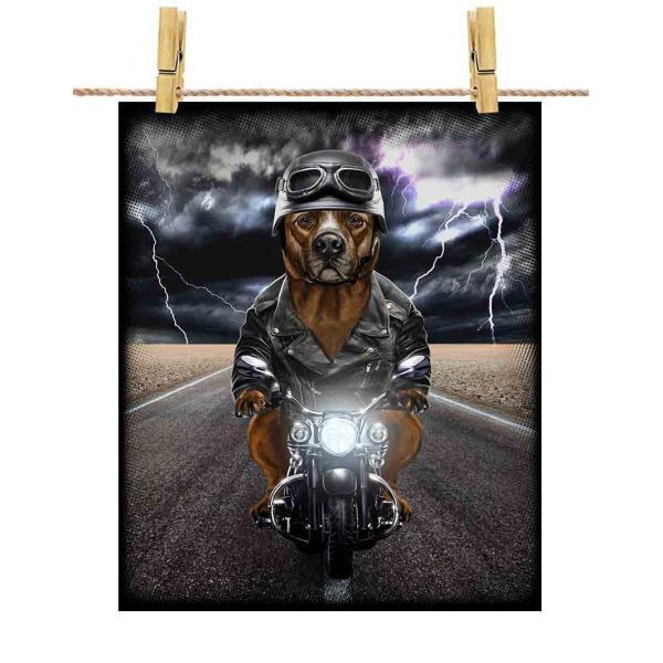 【茶毛のアメリカンピットブル ドッグ 犬 いぬ バイク ヘルメット】ポストカード by Fox Republic