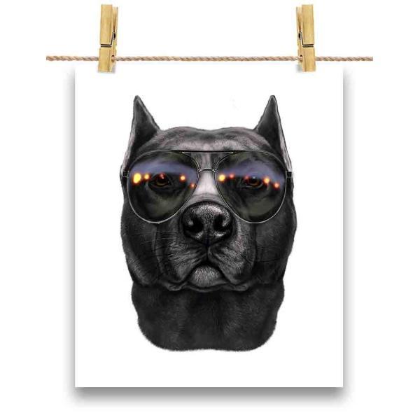 【黒毛のアメリカンピットブル ドッグ 犬 いぬ サングラス】ポストカード by Fox Republic