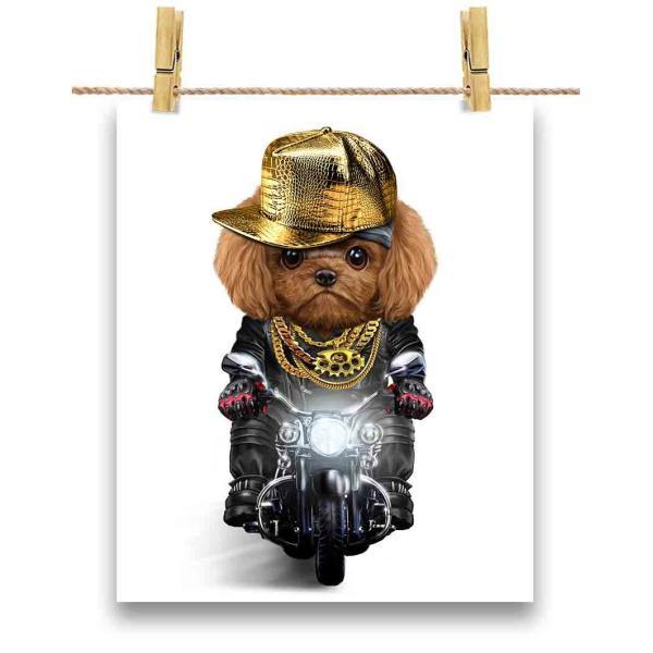 【茶毛 プードル ドッグ 犬 いぬ バイク ヒップホップ】ポストカード by Fox Republic