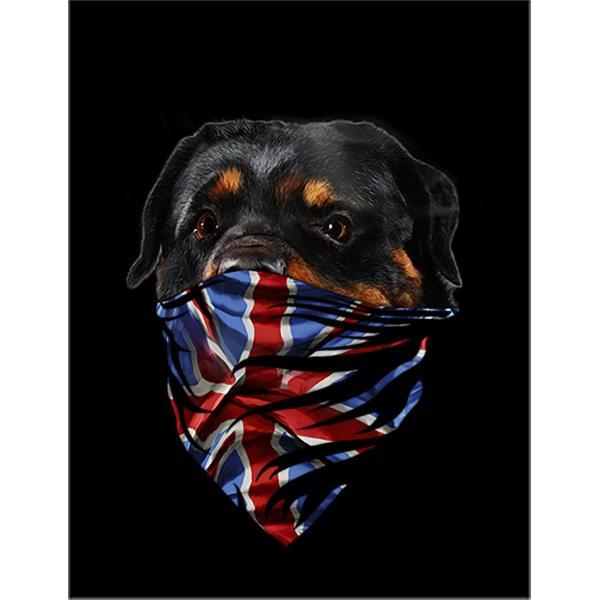 【イングリッシュ ブルドッグ ドッグ 犬 いぬ スノーボード スキー 冬 ウィンター】ポストカード by Fox Republic