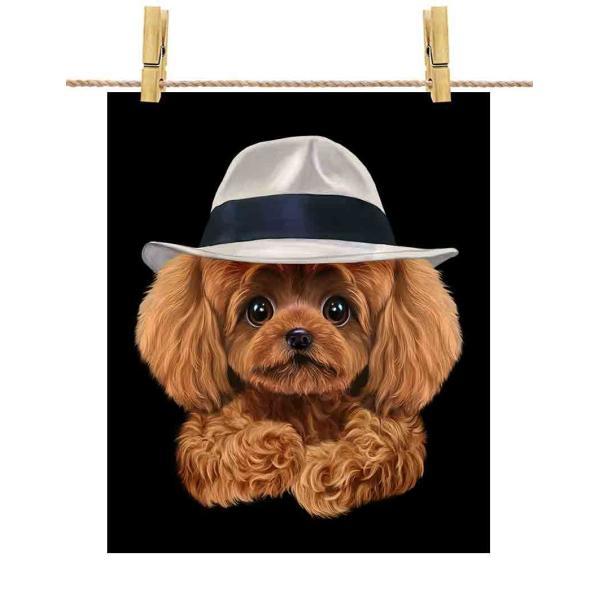 【赤毛のプードル ドッグ 犬 いぬ 帽子】ポストカード by Fox Republic