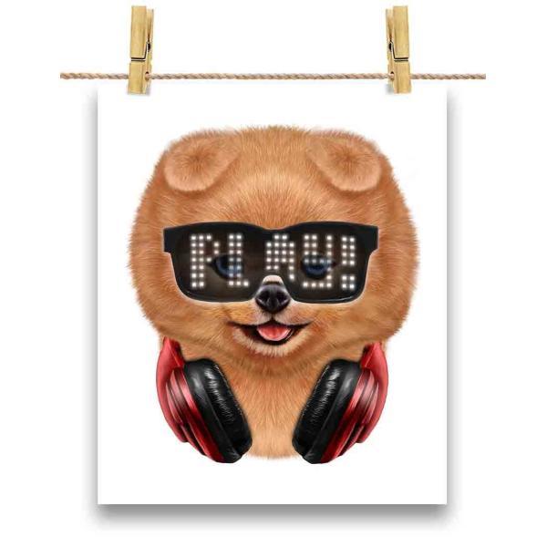 【ポメラニアン ドッグ 犬 いぬ めがね】ポストカード by Fox Republic