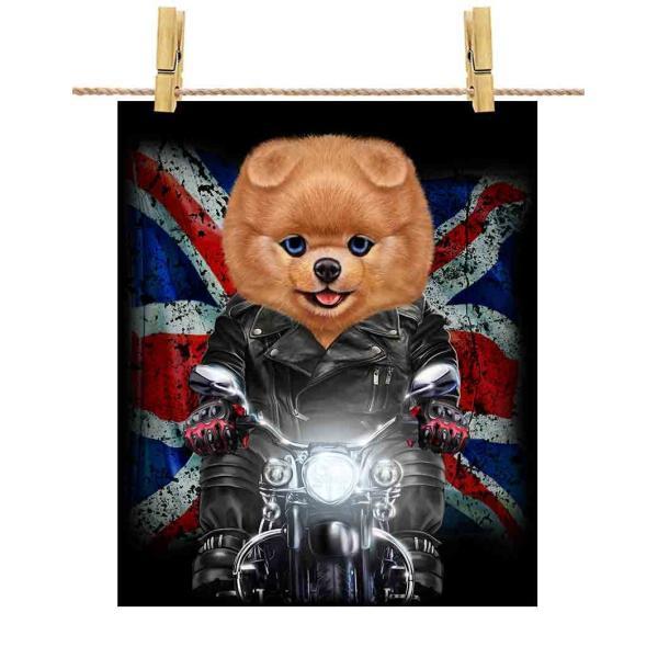 【ポメラニアン ドッグ 犬 いぬ バイク イギリス】ポストカード by Fox Republic