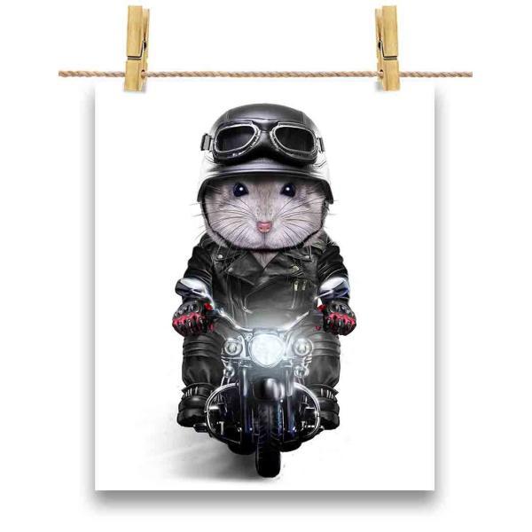 ポストカード ブルーサファイア・ハムスター バイク ヘルメット by Fox Republic