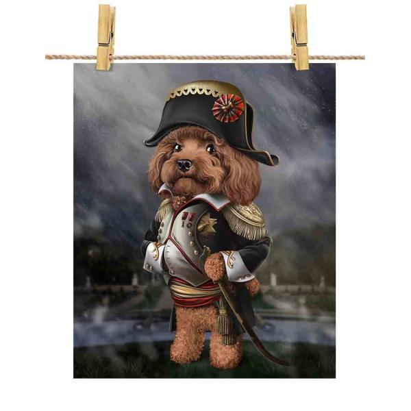 ポストカード プードル ナポレオン フランス 犬 by Fox Republic