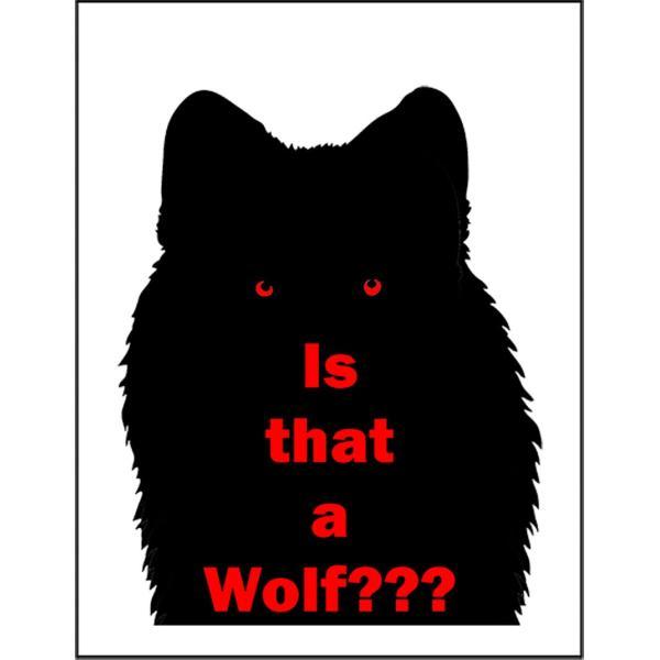 【あれはオオカミ?】ポストカード
