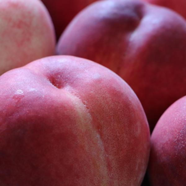 もも ジャム 内容量 132g 桃 モモ たまき ナポレオン ブランデー ペクチン・保存料・着色料 無添加|foxyflavor|02