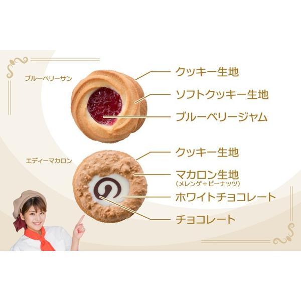 ロシアケーキ18個入 foyer 05