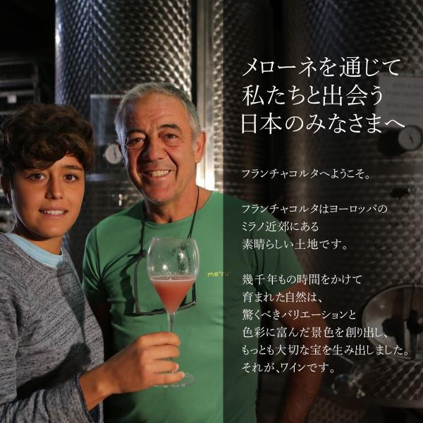 イタリア最高級スパークリングワイン フランチャコルタ ミッレジマート 2013 / サンクリストーフォロ 750ml 辛口 自然派ワイン 42ヶ月以上長期熟成 franciacorta 04