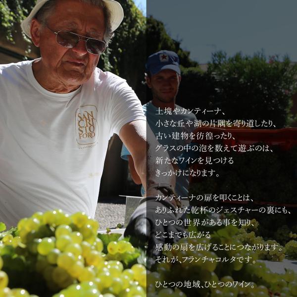フランチャコルタ パ・ドゼ 2013 スパークリングワイン 辛口 イタリア サン クリストーフォロ|franciacorta|05