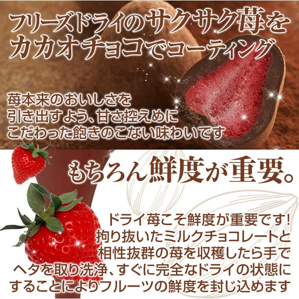お中元ギフト 神戸苺トリュフ(R)・カカオ|frantz|02