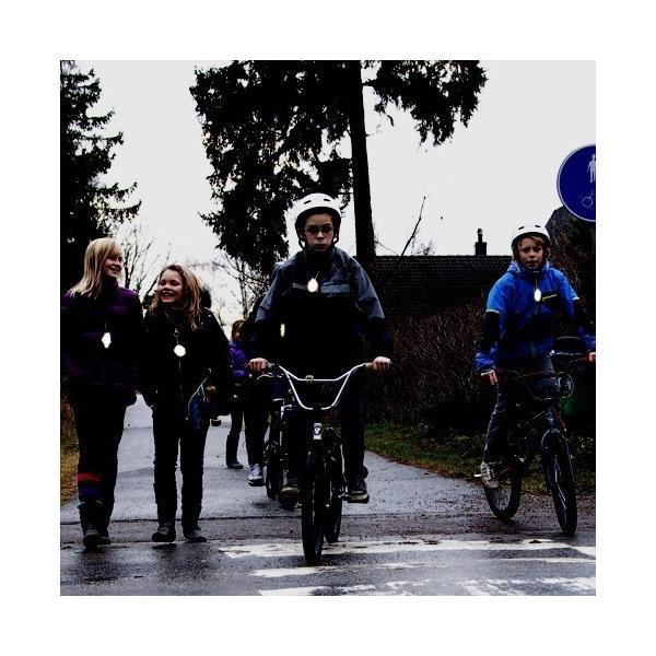 Glimmis  グリミス クローバー リフレクター キーホルダー 反射板 北欧雑貨 四つ葉 北欧の交通安全キーホルダー 子供 スウェーデン発 交通安全グッズ free-style 03