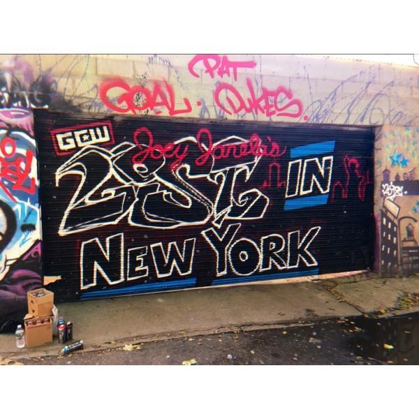 GCW DVD「Joey Janela's Lost In New York」(2018年8月17日ニューヨーク州クイーンズ)【マット・リドル 対 PCO】 freebirds 09