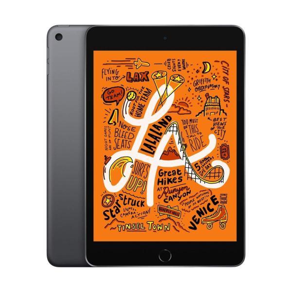 送料無料 ポイント消化 ご予約品 おすすめ 人気iPad 激安卸販売新品 mini - スペースグレイ Wi-Fi 256GB 最新モデル