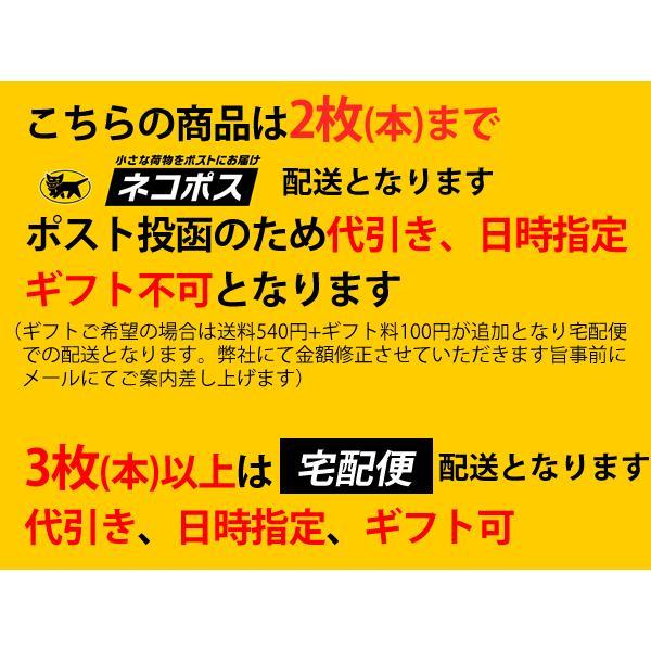 ヒヨコちゃん tシャツ ひよこちゃん チキンラーメン hra5300|freestylewear|10