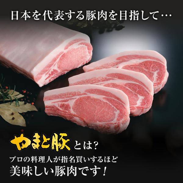 やまと豚ロース肉スライス300g   [冷凍] 豚肉 国産 やまと豚 肉 やまと 豚 グルメ お取り寄せ おいしい 豚ロース スライス 父の日 お中元 手土産 frieden-shop 05