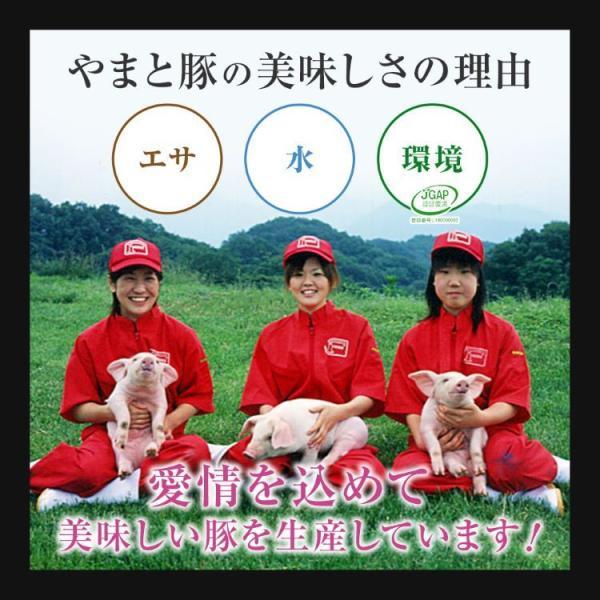 やまと豚ロース肉スライス300g   [冷凍] 豚肉 国産 やまと豚 肉 やまと 豚 グルメ お取り寄せ おいしい 豚ロース スライス 父の日 お中元 手土産 frieden-shop 07